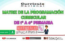 MATRIZ DE LA PROGRAMACIÓN CURRICULAR