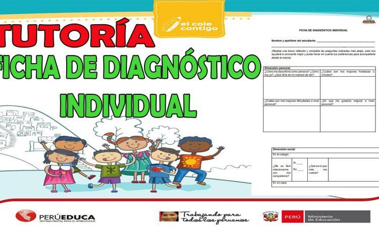 FICHA DE DIAGNÓSTICO INDIVIDUAL