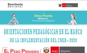 Orientaciones pedagógicas en el marco de la Implementación del CNEB – 2020