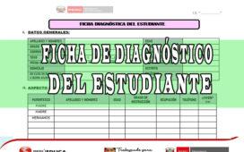 FICHA DE DIAGNÓSTICO DEL ESTUDIANTE