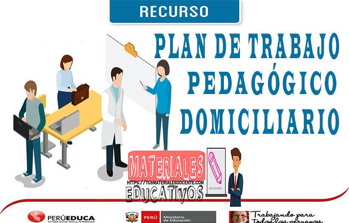 PLAN DE TRABAJO PEDAGÓGICO DOMICILIARIO