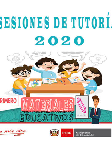 Sesiones de Tutoría 2020