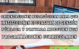 Minedu publica orientaciones pedagógicas para que instituciones educativas de gestión pública y privada adecuen sus programaciones curriculares