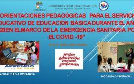 ORIENTACIONES PEDAGÓGICAS PARA EL SERVICIO EDUCATIVO DE EDUCACIÓN BÁSICA DURANTE EL AÑO 2020 EN EL MARCO DE LA EMERGENCIA SANITARIA POR EL COVID -19