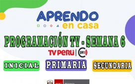 APRENDO EN CASA - Programación TV de la semana 6 [del 11 al 15 de mayo]