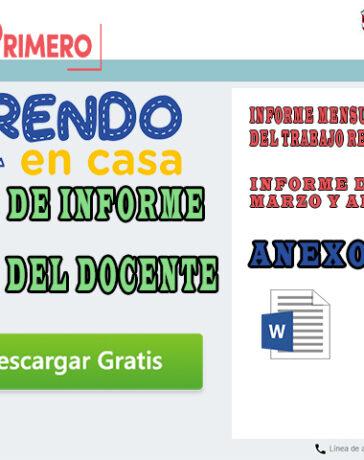 Minedu - Modelo de informe mensual del docente