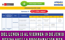 programacion web aprendo en casa semana 11