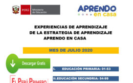 APRENDO EN CASA - EXPERIENCIAS DE APRENDIZAJE JULIO 2020