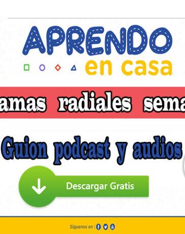 Aprendo en Casa – Programas radiales semana 16: Guion podcast y audios