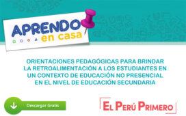 Orientaciones pedagógicas para brindar la retroalimentación a los estudiantes en un contexto de educación no presencial en el nivel de educación secundaria