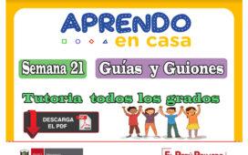 Aprendo en Casa: Guías y guiones de tutoria de 1º - 5º todos los grados
