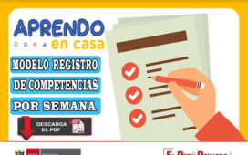 MODELO REGISTRO DE COMPETENCIAS POR SEMANA