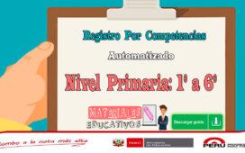Registro Por Competencias Automatizado - Nivel Primaria
