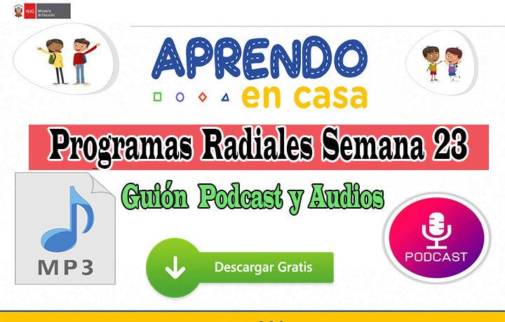 APRENDO EN CASA PROGRAMAS RADIALES Semana 23: Sesiones, Guiones y Audios del lunes 07 al viernes 11 de septiembre