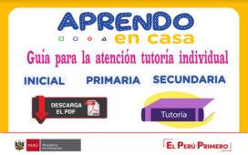 Guía tutoría individual inicial, primaria y secundaria