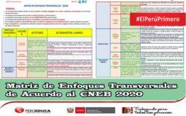 Matriz de Enfoques Transversales de Acuerdo al CNEB 2020