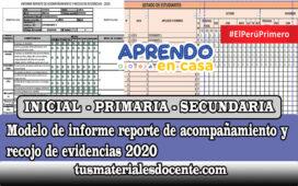 Modelo de informe reporte de acompañamiento y recojo de evidencias 2020 - INICIAL, PRIMARIA y SECUNDARIA