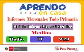 Octubre Informes mensuales primaria de 1° a 6° grado - Modalidades Radio, TV y Web