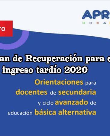 Plan de Recuperación para estudiantes de ingreso tardío 2020 - Aprendo en Casa