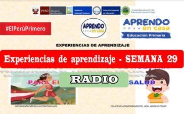 Semana 29 - Experiencias de aprendizaje Primaria Radio - Aprendo en Casa