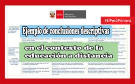 Ejemplo de conclusiones descriptivas en la educación a distancia
