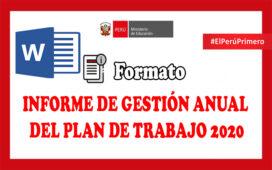 INFORME DE GESTIÓN ANUAL DEL PLAN DE TRABAJO 2020