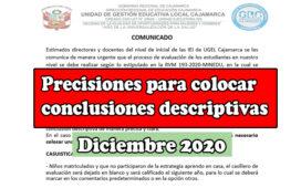 Precisiones para colocar conclusiones descriptivas diciembre 2020
