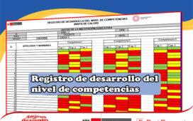 Descarga el registro de desarrollo del nivel de competencias [Mapa de calor]