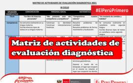 Matriz de actividades de evaluación diagnóstica