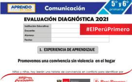 Modelo de evaluación diagnóstica - Comunicación