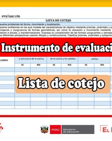 Modelo de instrumento de evaluación lista de cotejo - Matemáticas