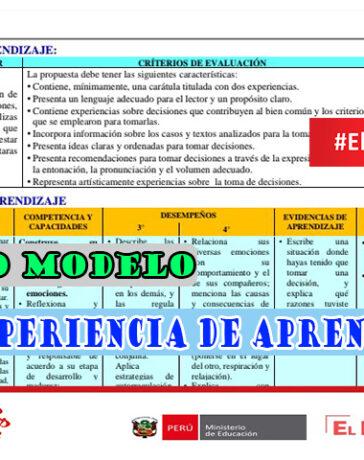 Nuevo modelo de experiencia de aprendizaje en el marco de la estrategia aprendo en casa
