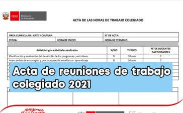 Modelo de acta de reuniones de trabajo colegiado 2021