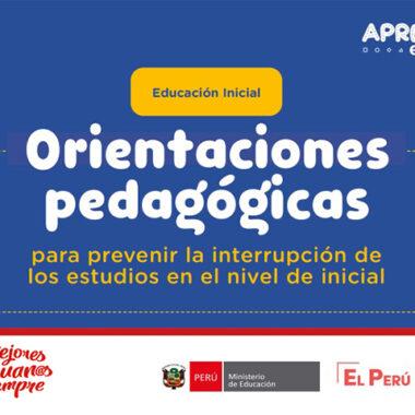 Orientaciones pedagógicas para prevenir la interrupción de los estudios en el nivel de inicial