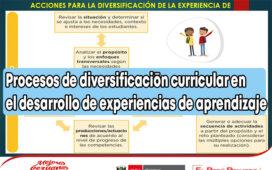 Procesos de diversificación curricular en el desarrollo de experiencias de aprendizaje