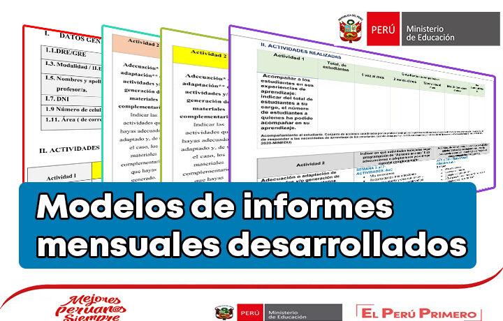 Modelos de informes mensuales desarrollados